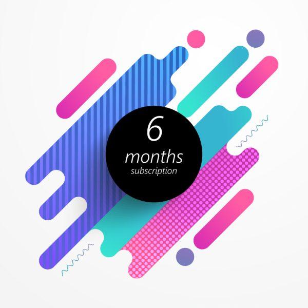 6 Months VPN