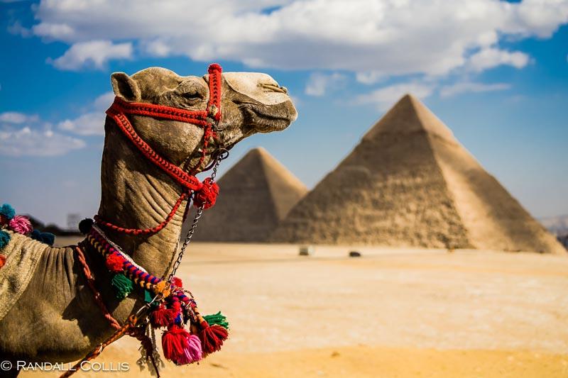 Open blocked website in Egypt